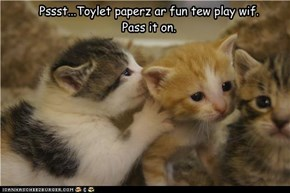 Pssst...Toylet paperz ar fun tew play wif.  Pass it on.