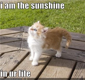 i am the sunshine  in ur life