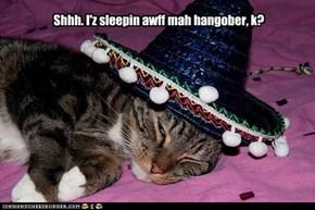 Shhh. I'z sleepin awff mah hangober, k?