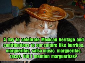 Happy Cinco de Mayo everyone!