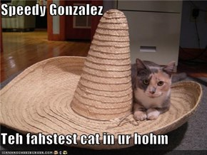 Speedy Gonzalez  Teh fahstest cat in ur hohm
