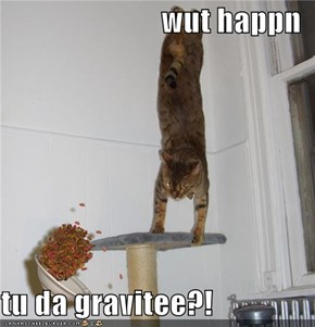 wut happn  tu da gravitee?!