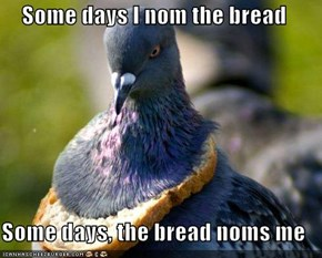 Some days I nom the bread  Some days, the bread noms me