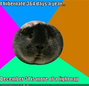 I hibernate 364 days a year...  December 31 is more of a light nap