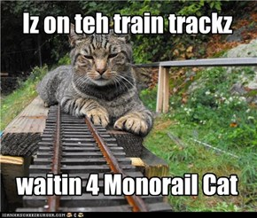 Iz on teh train trackz waitin 4 Monorail Cat
