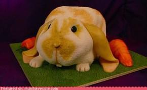 Epicute: Bunny Cake