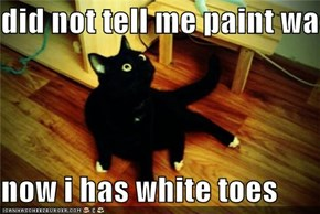 did not tell me paint was wet  now i has white toes