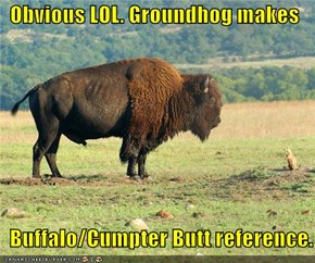 Obvious LOL. Groundhog makes    Buffalo/Cumpter Butt reference.