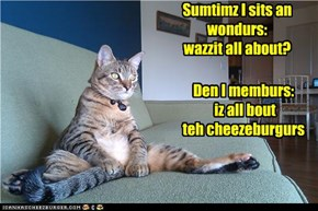 Sumtimz I sits an wondurs: wazzit all about?