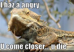 I haz a angry  U come closer... u die