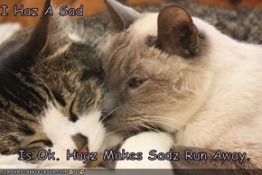 I Haz A Sad  Is Ok. Hugz Makes Sadz Run Away.