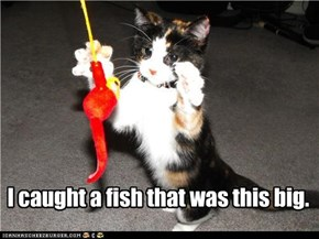 I caught a fish that was this big.