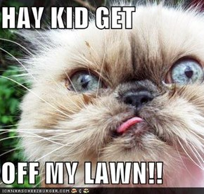 HAY KID GET  OFF MY LAWN!!