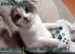 aaaahhhhh  mom just one more level