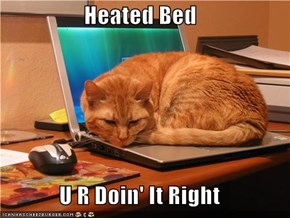 Heated Bed  U R Doin' It Right
