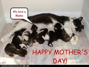 Happy Mother's Day!!!!