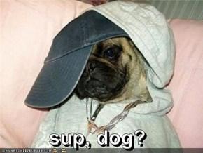 sup, dog?