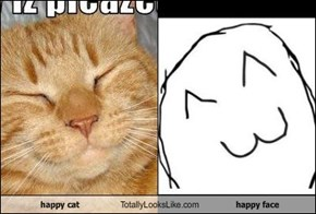 happy cat Totally Looks Like happy face