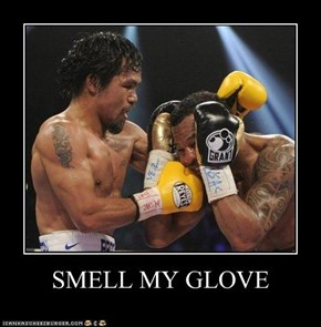 SMELL MY GLOVE