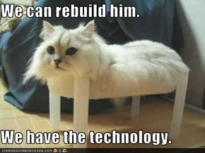 We can rebuild him...