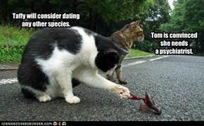 Taffy will consider dating any other species.