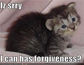 Iz srry.  I can has forgiveness?