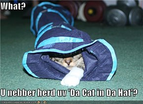 What?  U nebber herd uv 'Da Cat in Da Hat'?