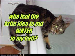who had the  brite idea to put WATER  in my baff?