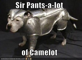 Sir Pants-a-lot  of Camelot