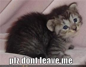 plz dont leave me