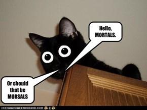 Hello, MORTALS.
