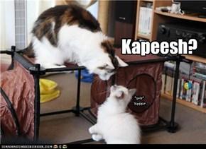 Kapeesh?
