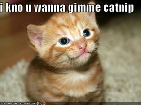 i kno u wanna gimme catnip
