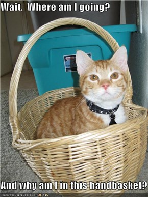 Wait.  Where am I going?  And why am I in this handbasket?