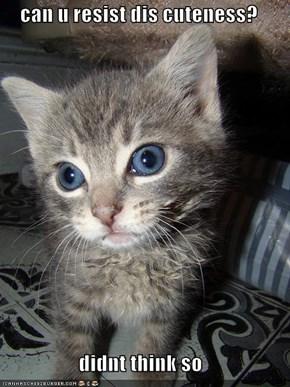 can u resist dis cuteness?  didnt think so