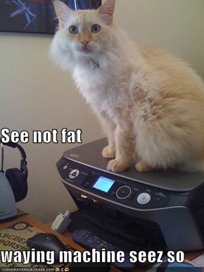 See not fat waying machine seez so