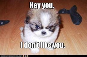 Hey you,