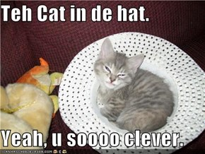 Teh Cat in de hat.  Yeah, u soooo clever.
