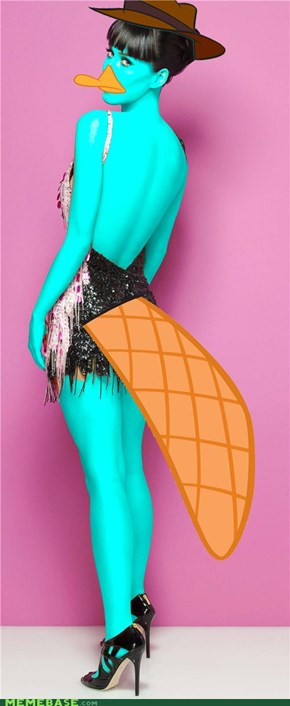Katy Perry the Platypus