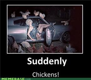 Suddenly Chickens!