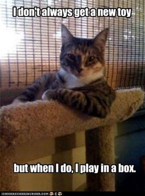 The Most Unappreciative Cat in the World