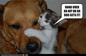 HAND OVER DA NIP OR DA DOG GETS IT!