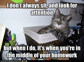 I don't always sit, and look for attention