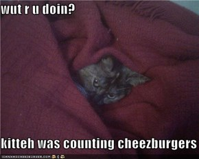 wut r u doin?  kitteh was counting cheezburgers
