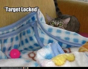 *Target Locked*