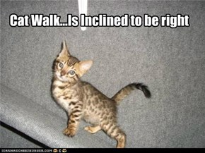 Cat Walk...Is Inclined to be right