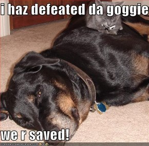 i haz defeated da goggie!  we r saved!