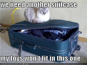 we need another suitcase  my toys won't fit in this one