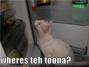 wheres teh toona?