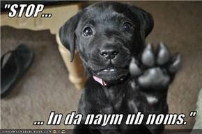 """""""STOP...  ... In da naym ub noms."""""""
